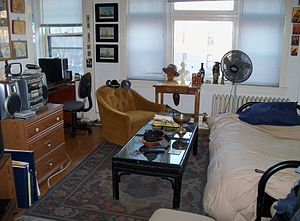 Studio apartment - The main room of a studio apartment in Minneapolis, United States. The sofabed is to the right and a small alcove on the left. Not shown are the small kitchen and bathroom.
