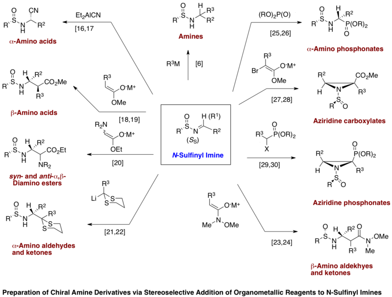 N Sulfinyl Imine Wikipedia