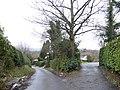 Sweethaws Lane - geograph.org.uk - 320115.jpg