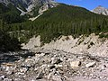 Swiss National Park 012.JPG