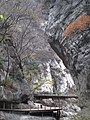 Tai Ping Forest Park 太平森林公园 (5248014599).jpg
