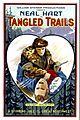 Tangled Trails FilmPoster.jpeg
