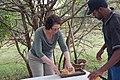 Tarangire 2012 05 28 1851 (7468543740).jpg