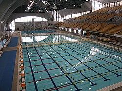 250px-Tatsumi-swim.JPG