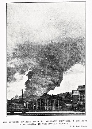 "Deforestation in New Zealand - Auckland Weekly News 1911 with a caption ""The epidemic of bush fires"""