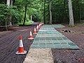 "Temporary walkway for filming ""Merlin"", Burnham Beeches - geograph.org.uk - 825546.jpg"