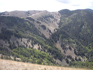 Lincoln National Forest - Lincoln National Forest - view from Crest Trail