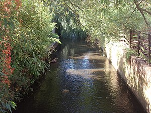 Addlestone - The Bourne to the east of Addlestone forms part of the lower watercourse of the Windle Brook and Lightwater