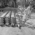 The British Reoccupation of Malaya SE6744.jpg