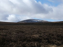 The Cheviot from Broadhope Hill.jpg