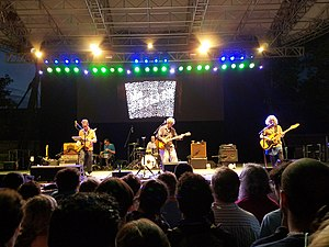 The Feelies - The Feelies performing in Central Park on July 18, 2016
