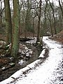 The Gorge, Roundhay Park - geograph.org.uk - 386600.jpg