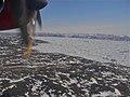 The Icefjord - panoramio.jpg