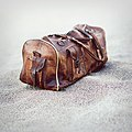 The Old Bag (17545491).jpeg