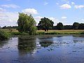 The River Loddon, Stratfield Saye - geograph.org.uk - 1422793.jpg