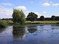 The River Loddon, Stratfield Saye - geograph.org.uk - 1422793.jpg