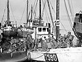 The Royal Navy during the Second World War N188.jpg