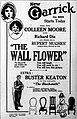 The Wall Flower (1922) - 4.jpg