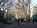 The cours Mirabeau in winter in Aix-en-Provence.jpg