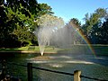 The fountain at Butter Hill - geograph.org.uk - 362488.jpg