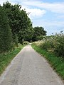 The road to Ashlands Farm - geograph.org.uk - 902238.jpg