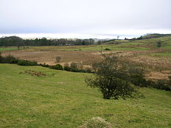 The site of the old Boghall Loch.JPG
