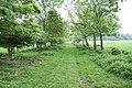 The track to Coalburn Cottage - geograph.org.uk - 834610.jpg
