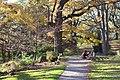 Toronto - High Park (6569751397).jpg