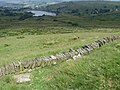Towards Leeming Reservoir - geograph.org.uk - 1375731.jpg