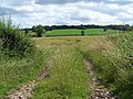 Track Near Westbrook Farm - geograph.org.uk - 1393941.jpg