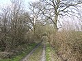 Track to Yew Tree Hall - geograph.org.uk - 378232.jpg