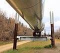 Trans-Alaska Pipeline System ENBLA03.jpg