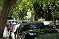 Tree Line Street (6479700199).jpg
