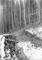 Treffer oberhalb eines Laufgrabens des Werkes Gaishorn - CH-BAR - 3240197.tif