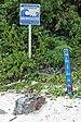 Tsunami Hasard Zone -sign.jpg