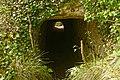 Tunnel craie La Roche-Guyon.jpg