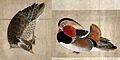Two paintings of ducks Wellcome V0046795.jpg