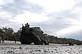 US Navy 070617-N-4207M-132 Marine Corps amphibious assault vehicles from the 3rd Marine Expeditionary Brigade, 31st Marine Expeditionary Unit, transit the beach during an amphibious landing rehearsal.jpg