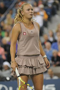 US Open 2009 4th round 154.jpg