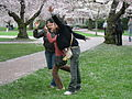 U Wash Quad cherry blossoms 14.jpg