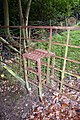 Unusual Gate Stile - geograph.org.uk - 1003888.jpg