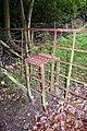 Unusual Gate Stile - geograph.org.uk - 1003888.jpg