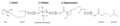 Urethane Formation Mechanism.png