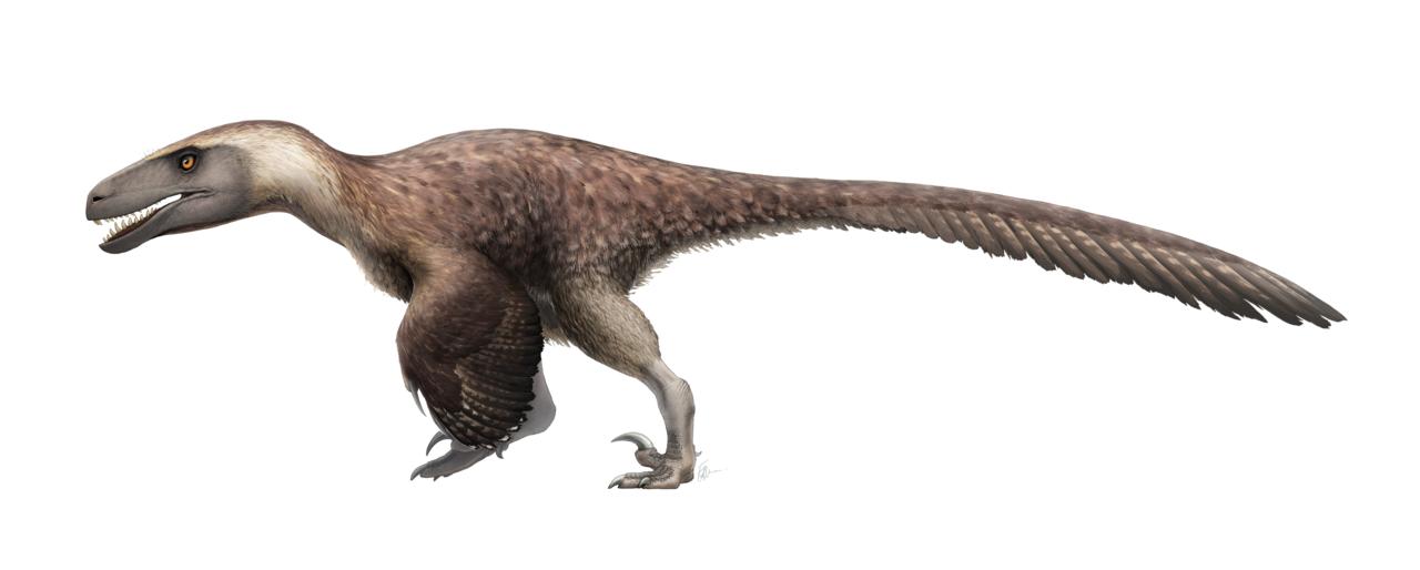 Dinosaur Full Size Bedding Sheet