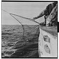 Vårfiske på Vardø - L0049 770Fo30141609280015.jpg