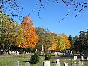 Vale Cemetery and Vale Park - Vale Cemetery, October 2003