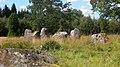 Valebergs gravfält (Raä-nr Larv 138-1) domarring 2965.jpg