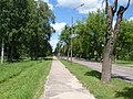 Valka, Ausekļa iela (3).JPG