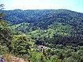Vallée des Charbonniers,vue de la roche des Evaux.jpg