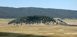 A forested lava dome in the midst of the Valle Grande, the largest meadow in the Valles Caldera National Preserve, New Mexico, United States.